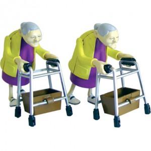 Racing Grannies 004